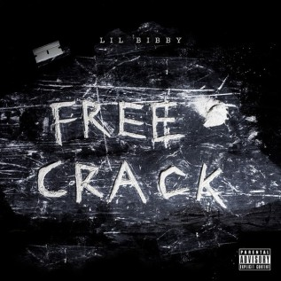 Looking Back: Free Crack