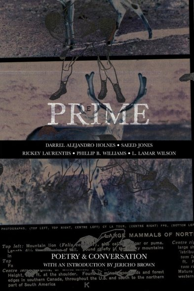 PRIME_COVER 2